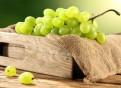 Виноград до весны