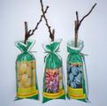упакованные саженцы винограда